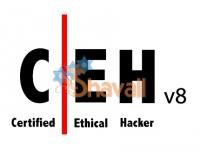 Certified Ethical Hacker Video Training Course