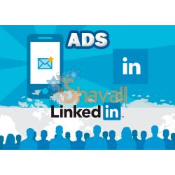 Vídeo Curso Crea Campañas de Marketing en LinkedIn Ads